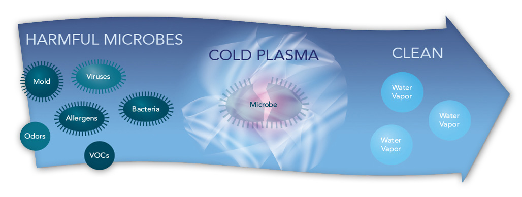 Cold Plasma Technology eliminates germs and odors.